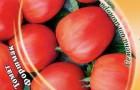 Сорт томата: Форшмак