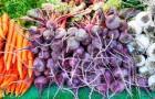 Как сохранить корнеплоды (Видео)