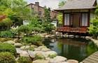 Обрезка растений для придания формы в японском саду