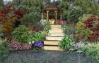 Подходящие растения для японского сада