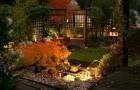 Подсветка японского сада