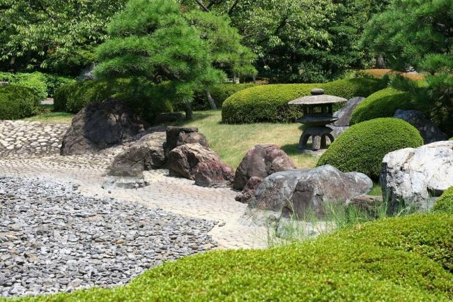 Растения для японского сада с более открытыми и легкими очертаниями