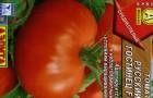 Сорт томата: Русский гостинец f1