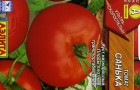 Сорт томата: Санька