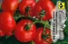 Сорт томата: Семко 99 f1