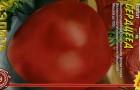 Сорт томата: Сердцеед
