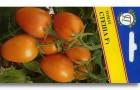 Сорт томата: Стеша f1