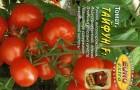 Сорт томата: Тэйфан f1