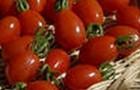 Сорт томата: Дульче f1