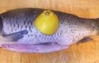 Посол карпов и другой крупной речной рыбы