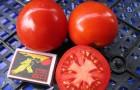 Сорт томата: Валютный