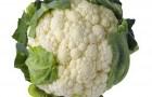 Сорт капусты цветной: Аделанто f1