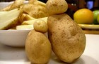 Сорт картофеля: Аргос