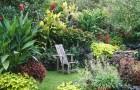 Летний сад