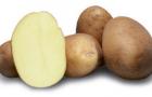 Сорт картофеля: Рикеа