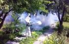 Как бороться с вредителями за органический огород