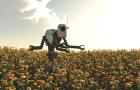 Скоро рабочих на полях заменят роботы
