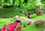 Уход за японским садом