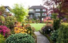 «Заброшенный» сад