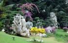 Сад голых форм