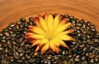 Средство для очищения с кофейной гущей
