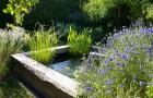 Вода в вашем саду