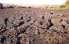 Истощение почв: причина расцвета и гибели многих цивилизаций