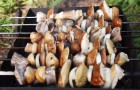 Шашлык из свежих грибов