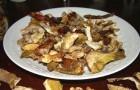 Сушка грибов по-владимирски