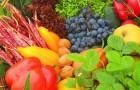Фруктово-овощная защита от астмы