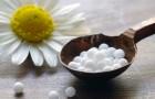 Гомеопатия при ревматизме