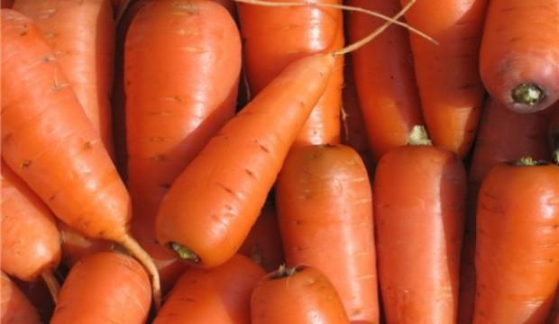 Использование моркови в диетах