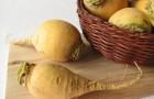 Использование репы в диетах