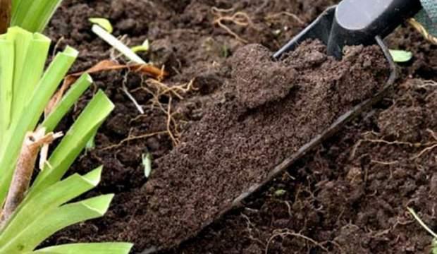 Подбор и подготовка почвы для выращивания комнатных растений