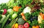 Семь простых овощей для начинающих садоводов