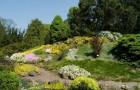 Ботанический сад Кракова
