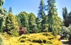 Национальный питомник Барр