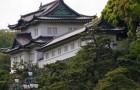 Отдельный дворец