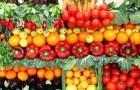 Пять причин выращивать фрукты и овощи