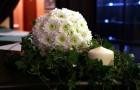 Шар из хризантемы
