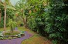 Сад маркизы Арукас