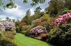 Сады Пукейти