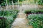 Сады воображения