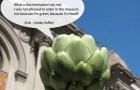 Смешные селфи-фото овощей