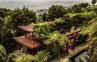 Тропический сад виллы Монте Паласио