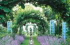 Сады дома Шеферд