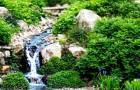 Ботанический сад Кворрихилл