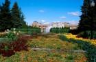 Ботанический сад Несс