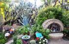 Ботанический сад Таксон