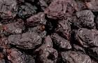 Чернослив – новый секрет похудания?